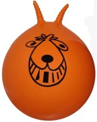 Space hopper ... My favourite Toy and I still have it ;-) Should I admit to still bouncing on it ;-) You're never too Old :-)
