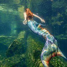 Fly through the water like a bird on the open sea. Mermaid Swim Tail, Fin Fun Mermaid, Mermaid Cove, Mermaid Swimming, Mermaid Art, Mermaid Paintings, Mermaid Tail Drawing, Tattoo Mermaid, Vintage Mermaid