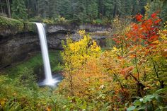 Silver Falls State Park, Silverton, OR--- or home