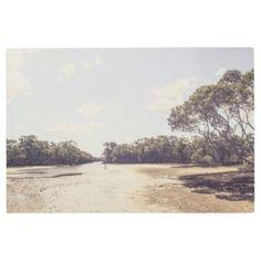 #Posters #Metal #Art - #Antique mangrove landscape metal print