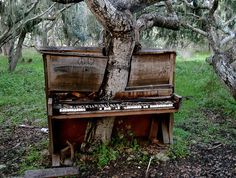 I don't know why but, this picture hit me like a ton of bricks... (piano,love,peace,trees)