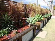 small retaining wall with galvanized sheets - Google Search