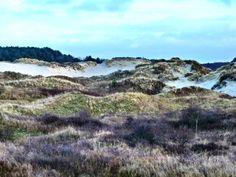 Schiermonnikoog island, The Netherlands