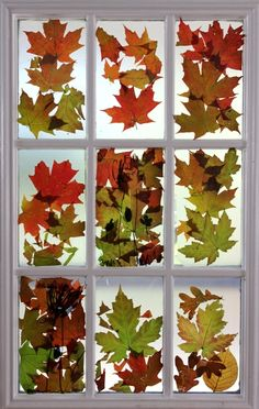 Try this autumn leaves stained glass project with your kids. #DIY #fall #decor