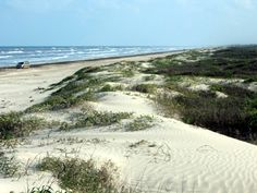 Padre Island TX. Stationed briefly in Corpus Christi 1990.