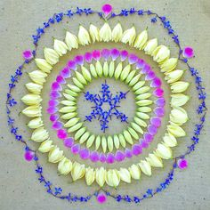 flower mandala by Kathy Klein  wow. so many on her site, hard to pick just one, but this beauty caught my eye!
