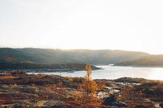 Roadtrip till Lofoten – Första dagen, Piteå till Narvik