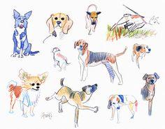Claudio Acciari: Studies - Dogs