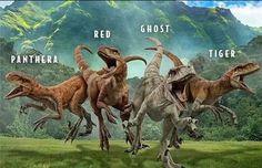 Jurassic World Raptors, Jurassic World Dinosaurs, Jurassic Park World, Prehistoric World, Prehistoric Animals, Godzilla, Creatures, Poster, Dragons