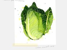 Watercolour by Emma Dibben, who has done illustrations for Waitrose and The Guardian.