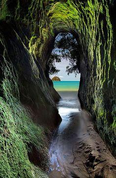 Abel Tasman National Park New Zealand | Darren Patterson Say Yes To Adventure