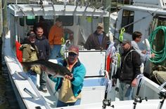 Our Annual Rockfish Open - This popular spring event sets out from Chesapeake Beach where participants seek to capture one of the most popular fish in the bay.