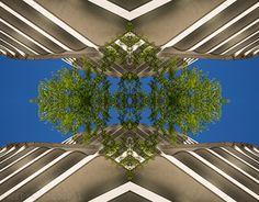 """Check out new work on my @Behance portfolio: """"In der Mitte wächst ein Busch"""" http://be.net/gallery/54370615/In-der-Mitte-waechst-ein-Busch"""