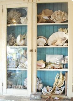 Beach Cottage Vintage Cabinet to display Ocean treasures...I like the blue painted on the back of the cabinet