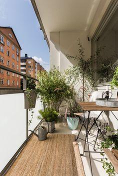 Pergola For Small Backyard Refferal: 6797492177 Pergola Canopy, Backyard Pergola, Pergola Plans, Pergola Kits, Balcony Plants, Balcony Garden, Balcony Ideas, Outdoor Spaces, Outdoor Living