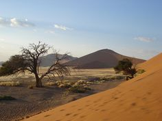 Sossusvlei, Namibia  - BelAfrique - Your Personal Travel Planner - www.belafrique.co.za