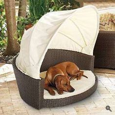 Outdoor Dog Bed ~ http://modtopiastudio.com/the-unique-raised-dog-bed-for-the-beloved-pet/