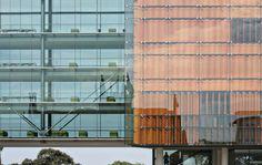 law university of sydney essaylab