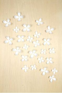 Set of 25 Wallflower Wall Decor  -- have these, they're kind of amazing.