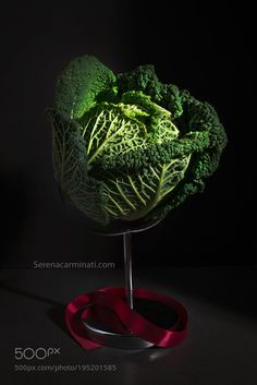 Cabbage With Red Ribbon by Foodfulife