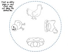 Life cycle craft and coloring page | Preschool Activities