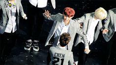 Chen patting a cute wolf ❤