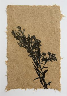 Beautiful handmade paper made from invasive plants, with gel transfer print of native goldenrod,by artist Jane Kramer. woodendeckle.com
