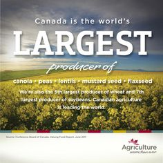 Canada is the world's largest producer of canola, peas, lentils, mustard seed, flaxseed.  We're also the 5th largest producer of wheat & 7th largest producer of soybeans.
