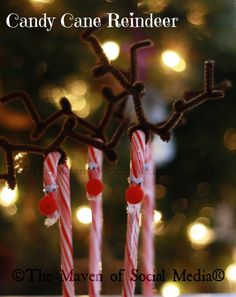 Holiday Craft: Candy Cane Reindeer    Christmas