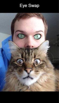 Eye Swap