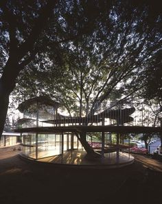 Ring around a tree by Tezuka Architects  annex building to the Fuji Kindergarten that was designed in 2007 in Tachikawa, Tokyo, Japan