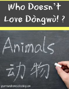 Who Doesn't Love Dòngwù! ? - http://www.yearroundhomeschooling.com/doesnt-love-dongwu/