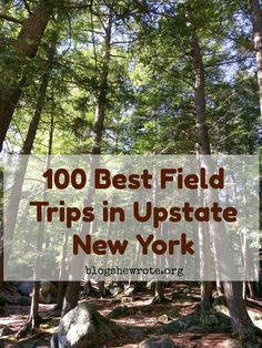 Explore the world of New York State outside the city. Upstate NY is home to Revolutionary history, unique geology, and amazing scenery. New York Vacation, New York Travel, Upstate New York, New York Blog, Lake George Village, New York Winter, Us Travel Destinations, Day Trips, The Great Outdoors