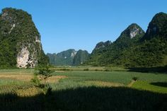 VIETNAM MOTORBIKE TOURS: read reviews and find the best deals for all guided motorbike tours in Vietnam. All tours run bike new Japanese trail bikes.