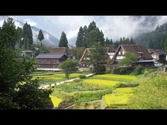 [ 4K Ultra HD ]白川郷•五箇山 稔の季節 Shirakawago & Gokayama in harvest season( Shot on RED EPIC ) - YouTube