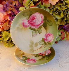 2 Beautiful Vintage German Porcelain Plates ~ Pink Roses