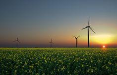 ONU reabre inscrições para curso técnico gratuito em energias renováveis