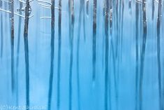I'm Kent Shiraishi. Photography for me is a type of self-expression. I studied photography in university, but dropped out because it wasn't interesting for me. Later I tried a summer school, but eventually I ended up learning by myself.