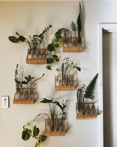 Needed my own living wall/propagation station! House Plants Decor, Plant Decor, Plants In Jars, Boho Chic Living Room, Diy Zimmer, Plant Aesthetic, Aesthetic Bedroom, Plant Wall, Indoor Plants