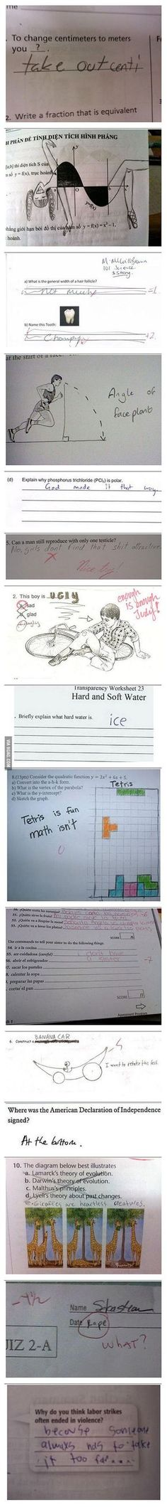 Some funny exam answers!