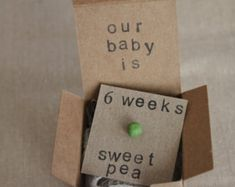 6 week Pregnancy Announcements, How Big Is My Baby, Gender Reveals, Baby Size