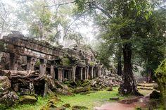 #travel #cambodia #snapshot #ankor #여행 #캄보디아 #캄보디아여행 #앙코르유적 #여행사진 #스냅사진 #포토그래퍼 #photographer