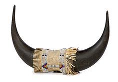 Plains Buffalo Horns with Sioux Beadwork Pair of large horns connected at center with sinew-sewn hide beaded in colors of dark blue, greasy yellow, red white-heart, and white, length 15 in. early 20th century
