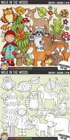 Woodland animals clip art for teachers! | Contains coloured clipart + black and white outlines all at 300 dpi for highest quality printing for your resources and projects! | Hand-drawn clip art by Kate Hadfield Designs at Teachers Pay Teachers