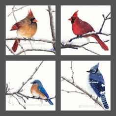 watercolor bird painting Red and Blue Songbirds in por bleuherron, $56,00