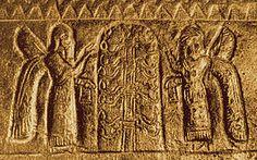 Árbol de la vida - Wikipedia, la enciclopedia libre
