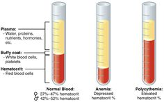 Centrifuged blood.       http://cnx.org/content/m49668/latest/