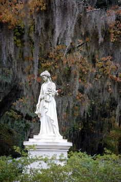 The statue of muorning lady lost in an autumnal forest, Bonaventure Cemetery, Savannah. Cemetery Angels, Cemetery Statues, Cemetery Headstones, Old Cemeteries, Cemetery Art, Angel Statues, Graveyards, Bonaventure Cemetery, Savannah Chat