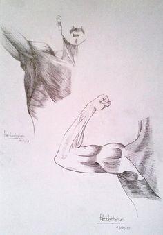 Más brazos, pecho y espalda | More arms, chest and back.