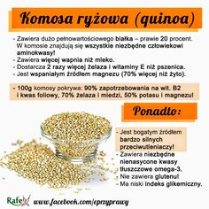 komosa ryżowa właściwości
